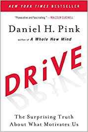 Daniel Pink, Drive - Was Sie wirklich motiviert